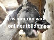 klickbarbild